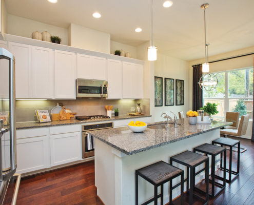 Kathy Andrews Interiors David Weekley Homes Villas at Roanoke Westworth 8677 San Antonio, TX Kitchen