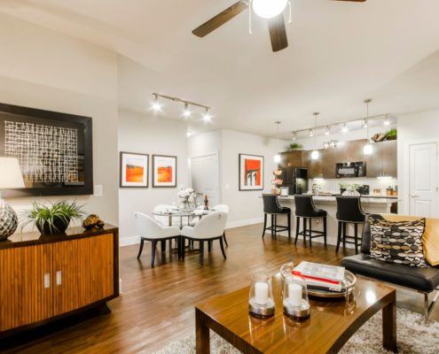Kathy Andrews Interiors Grand at the Dominion Multifamily Model Living 2