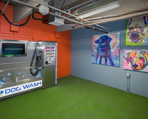 Kathy Andrews Interiors The Core Scottsdale Multifamily Leasing and Amenity Center Dog Wash