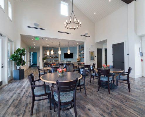 Active Adult Living Community Spaces -Dining Room Kathy Andrews Interiors - David Weekley Homes Encore at Briar Chapel