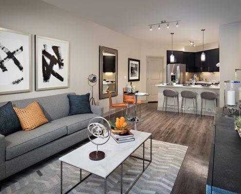 Kathy Andrews Interior Multifamily Interior Design The Core Scottsdale Model