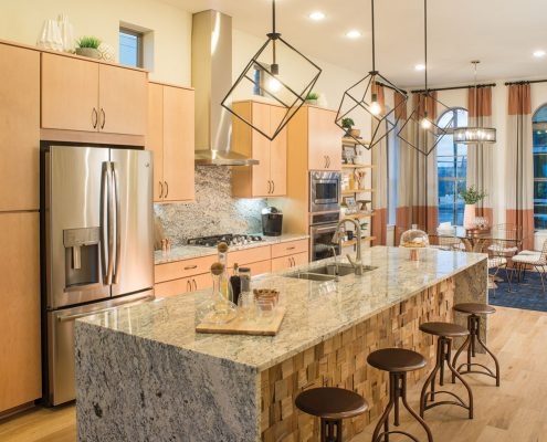 Kathy Andrews Interiors David Weekley Homes Southside Place Angelou 8609 Dallas TX Kitchen