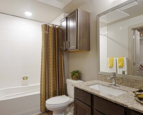 Kathy Andrews Interiors Multifamily Garden Style Interior Design SoCo at Tower Point Model Unit Bathroom