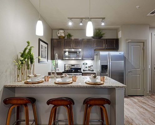 Kathy Andrews Interiors Multifamily Garden Style Interior Design SoCo at Tower Point Model Unit Kitchen 1