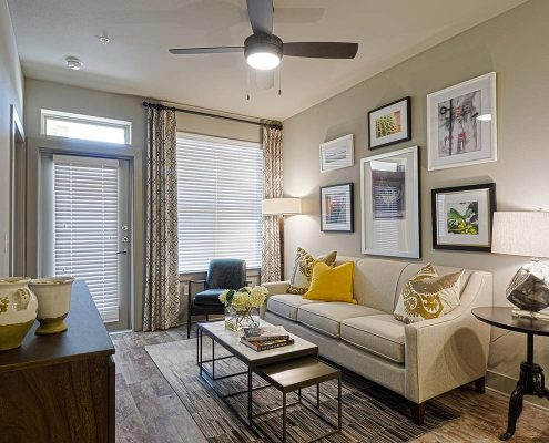 Kathy Andrews Interiors Multifamily Garden Style Interior Design SoCo at Tower Point Model Unit Living Room