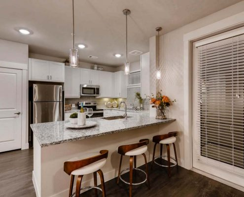 Kathy Andrews Interiors Multifamily Interior Design Model Units Venue at the Promenade Kitchen 2