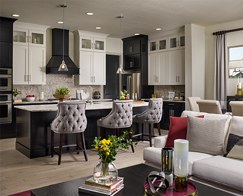 Kathy Andrews Interiors David Weekley Homes Encore at Anthem Ranch Denver Colorado Kitchen CROPPED