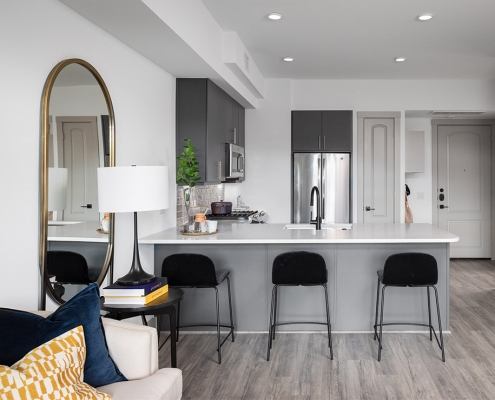 Kathy Andrews Interiors Multifamily Mid Rise and High Rise Interior Design 15th Street Flats Model Unit Kitchen 2