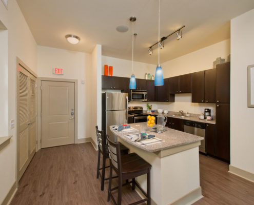 Kathy Andrews Interiors Asset Plus Student Housing The Domain at Oxford MS 2B Kitchen 2
