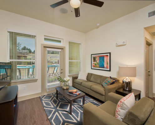 Kathy Andrews Interiors Asset Plus Student Housing The Domain at Oxford MS 2B Living room