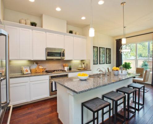 Kathy Andrews Interiors David Weekley Homes Villas at Roanoke Westworth 8677 San Antonio, TX Kitchen