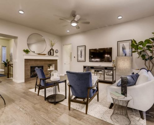 Kathy Andrews Interiors Richfield Homes Summer Hawk at Fox Meadow Longmont CO Family Room 2