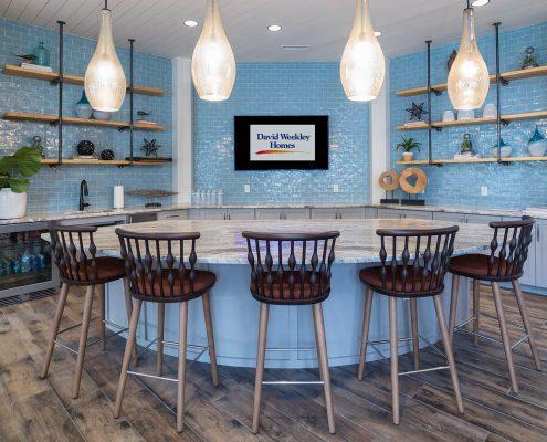 Active Adult Living Community Spaces - Kitchen Kathy Andrews Interiors - David Weekley Homes Encore at Briar Chapel