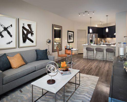 Kathy Andrews Interior Multifamily Interior Design The Core Scottsdale Model