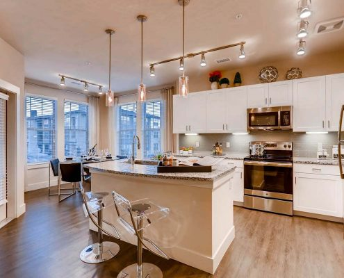 Kathy Andrews Interiors Multifamily Interior Design Model Units Touchstone Kitchen 2