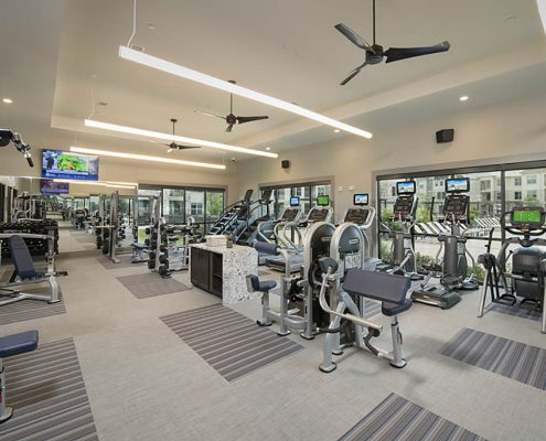 Kathy Andrews Interiors Multifamily Garden Style Interior Design SoCo at Tower Point Leasing and Amenity Center Fitness