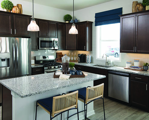 Kathy Andrews Interiors David Weekley Homes Donegal South 7735 Minneapolis St. Paul Minnesota Kitchen Close Up CROPPED
