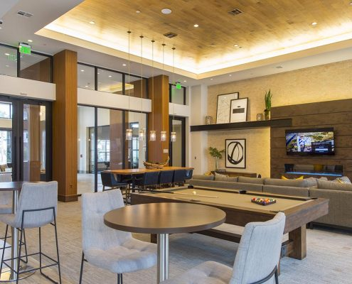 Kathy Andrews Interiors Domain New Forest Multifamily Leasing and Amenity Center Club Room 3