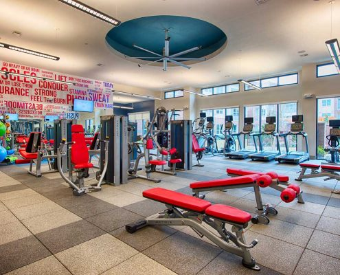 Kathy Andrews Interiors Domain New Forest Multifamily Leasing and Amenity Center Fitness