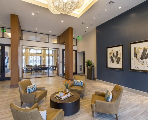 Kathy Andrews Interiors Domain New Forest Multifamily Leasing and Amenity Center Lobby