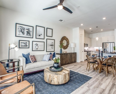 Kathy Andrews Interiors Multifamily High Rise and Mid Rise Interior Design Model Unit 255 Assay Living Room 2