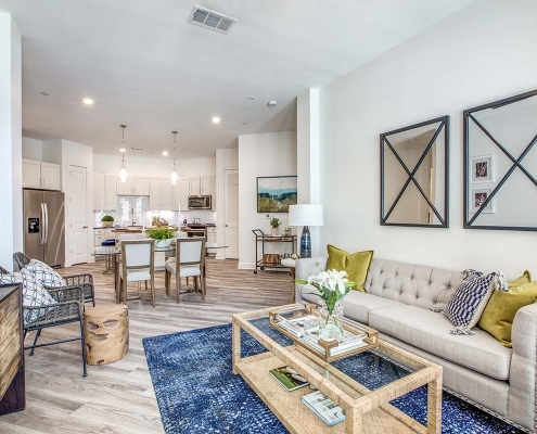 Kathy Andrews Interiors Multifamily High Rise and Mid Rise Interior Design Model Unit 255 Assay Living Room