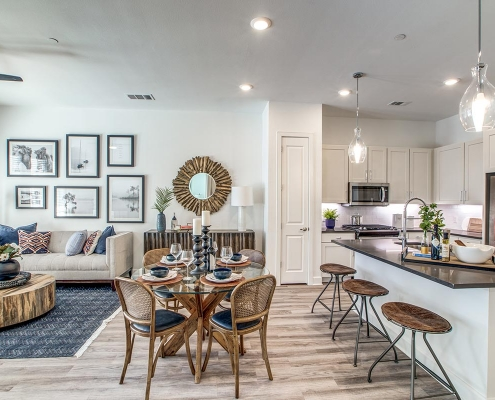 Kathy Andrews Interiors Multifamily High Rise and Mid Rise Interior Design Model Unit 255 Assay Living Room and Kitchen